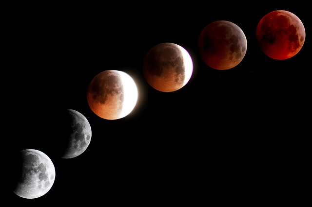 Eclipse Lunar - Moon Blood Moon Super Moon - Comfreak / Pixabay